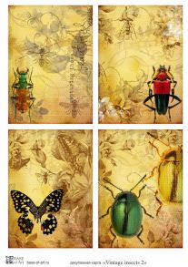 Vintage insects 2  30 гр/м2
